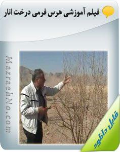 فیلم آموزشی هرس فرمی درخت انار