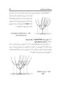 کتاب سیستم های تربیت درخت گیلاس