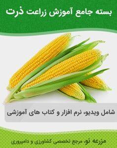 بسته جامع آموزش زراعت ذرت
