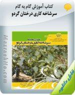 کتاب آموزش گام به گام سرشاخه کاری درختان گردو