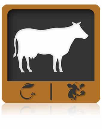 دانشنامه گاوداری | اپلیکیشن اندروید آموزش پرورش گاو