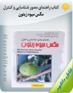 کتاب راهنمای مصور شناسایی و کنترل مگس میوه زیتون