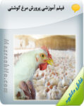 فیلم آموزشی پرورش مرغ گوشتی