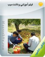 فیلم آموزشی برداشت سیب