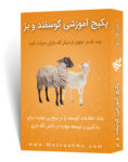 پکیج جامع آموزش پرورش گوسفند و بز