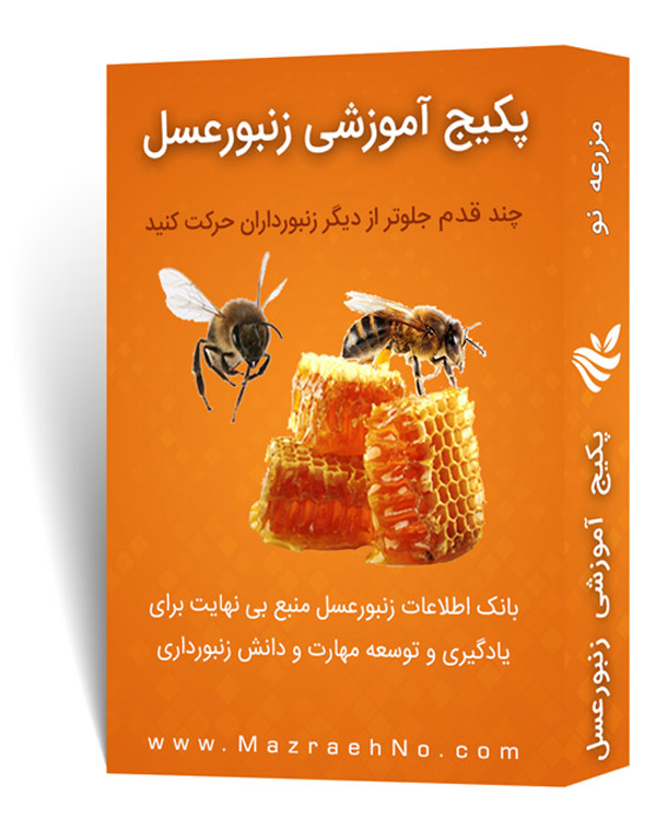 پکیج آموزشی پرورش زنبور عسل