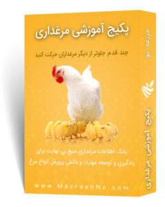 پکیج آموزشی پرورش مرغ