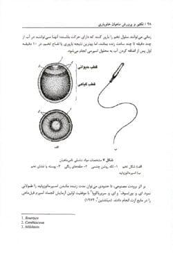 کتاب تکثیر و پرورش ماهیان خاویاری