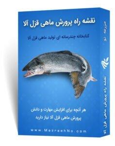 نقشه راه آموزش پرورش ماهی قزل آلا