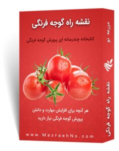 نقشه راه آموزش پرورش گوجه فرنگی
