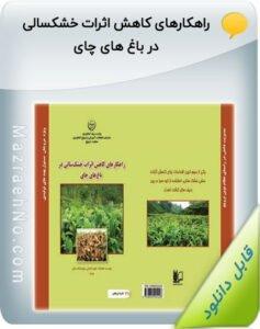 نشریه ترویجی راهکارهای کاهش اثرات خشکسالی در باغ های چای