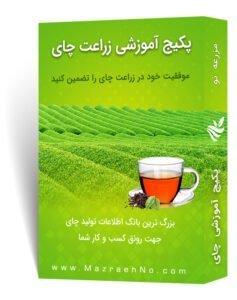 پکیج آموزشی زراعت چای