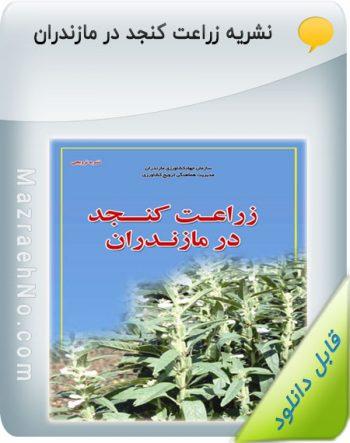 نشریه زراعت کنجد در مازندران