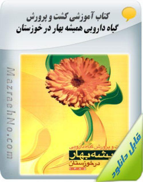 دانلود کتاب کشت و پرورش گیاه دارویی همیشه بهار در خوزستان